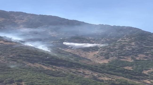 Bitlis'te Çıkan Yangınlar Kontrol Altına Alında